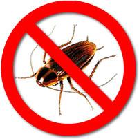 Cockroach Control Oakville
